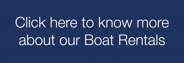 Boat Rental Oporto   BBDouro - We do Sailing